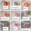 Rose colour samples 3