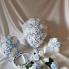 baby-blue-white-wedding-package