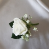ivory-single-buttonhole