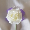 ivory-rose-single-buttonhole